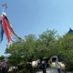 和歌山城天守閣にこいのぼり「逆風に向かう勇気を」
